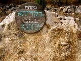 Top Travel Tip: Kadita Cabins in northern Isreal