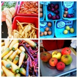 Top Travel Tip: Portland Farmer's Market