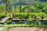 Top Travel Tip: Hotel BambuIndah