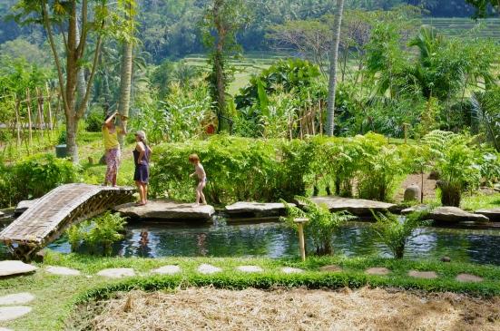 Bambu Indrah