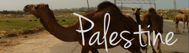 Palestine travel guide