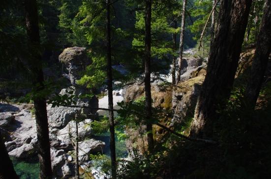 three pools through the trees
